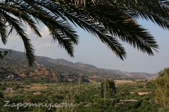Cypr widok